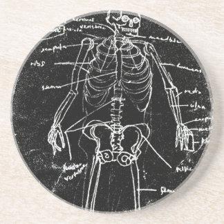 Porta-copos anatomia de esqueleto humana de tokyo do yaie