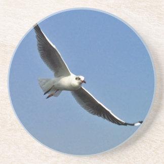 Porta-copos As gaivotas são pássaros bonitos