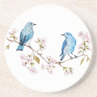 Porta-copos Bluebirds da montanha no ramo de Sakura