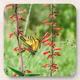 Porta Copos Borboleta e Wildflowers de Swallowtail do tigre