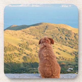 Porta-copos Cão só que olha no passo de Gibraltar
