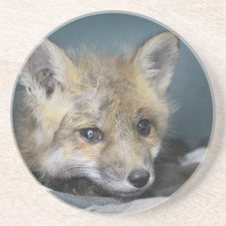 Porta-copos Capa de telefone do Fox