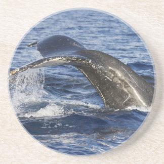 Porta-copos Cauda da baleia