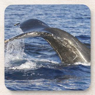 Porta Copos Cauda da baleia