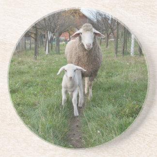 Porta-copos Cordeiro e carneiros