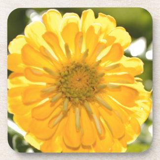 Porta Copos Cosmo amarelo