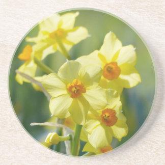 Porta-copos Daffodils bonito, narciso 03.2_rd