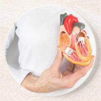 Porta-copos De Arenito A mão guardara o modelo humano do coração no corpo