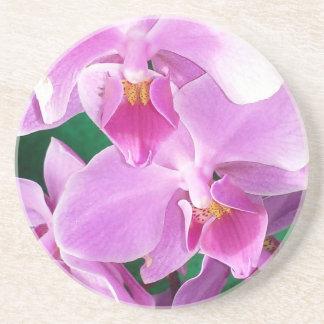 Porta-copos De Arenito A orquídea floresce close up no rosa