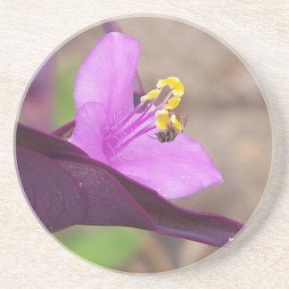 Porta-copos De Arenito a planta roxa chamou o spiderwort e uma abelha