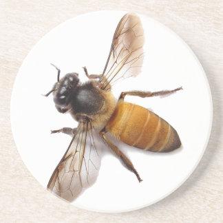 Porta-copos De Arenito Abelha do mel