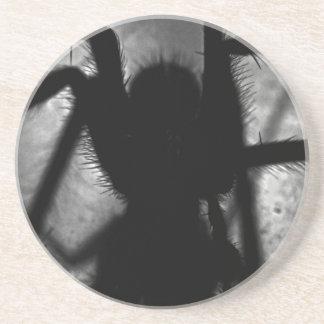 Porta-copos De Arenito Arachnophobia…