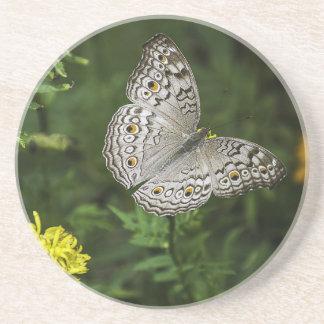 Porta-copos De Arenito borboleta
