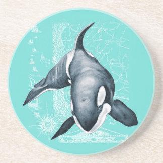 Porta-copos De Arenito Branco da cerceta da orca