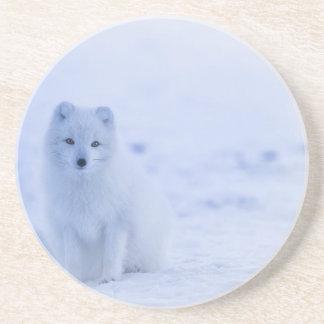 Porta-copos De Arenito branco do poder dos animais de Islândia