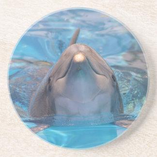 Porta-copos De Arenito Cabeça do golfinho de bottlenose