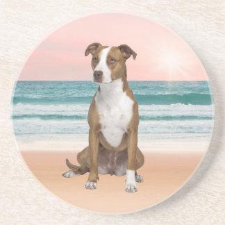 Porta-copos De Arenito Cão bonito de Pitbull que senta-se na praia com