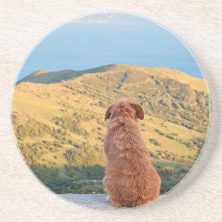 Porta-copos De Arenito Cão só que olha no passo de Gibraltar