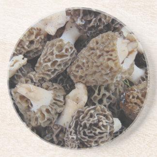 Porta-copos De Arenito Cogumelos do Morel