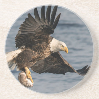 Porta-copos De Arenito Comida de travamento da águia americana