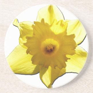 Porta-copos De Arenito Daffodil 1,0 da trombeta amarela