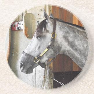 Porta-copos De Arenito Destin - abrigo do cavalo