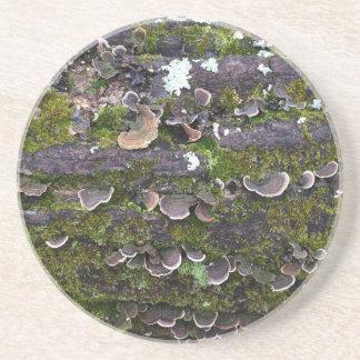 Porta-copos De Arenito divertimento mossy do cogumelo