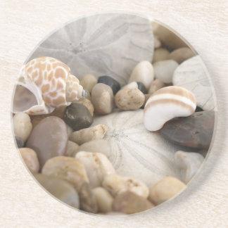 Porta-copos De Arenito Escudos e seixos do dólar de areia