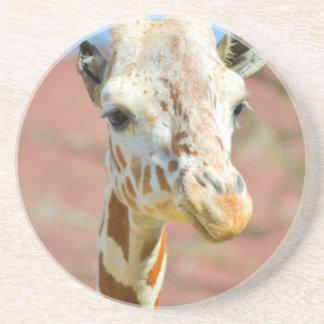 Porta-copos De Arenito Girafa