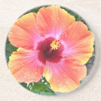 Porta-copos De Arenito Hibiscus cósmico do dançarino