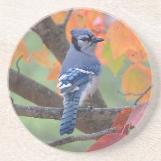 Porta-copos De Arenito Jay azul