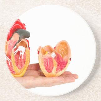 Porta-copos De Arenito Mão com modelo humano do coração em background.jp