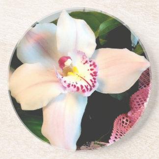 Porta-copos De Arenito Orquídea branca do Cymbidium