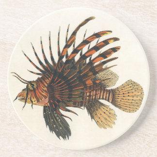 Porta-copos De Arenito Peixes do Lionfish do vintage, animal marinho da
