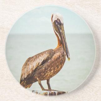 Porta-copos De Arenito Pelicano bonito empoleirado sobre o oceano