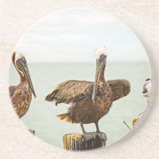 Porta-copos De Arenito Pelicanos empoleirados em cargos