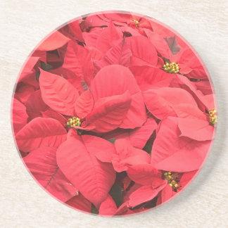 Porta-copos De Arenito Poinsétia vermelha