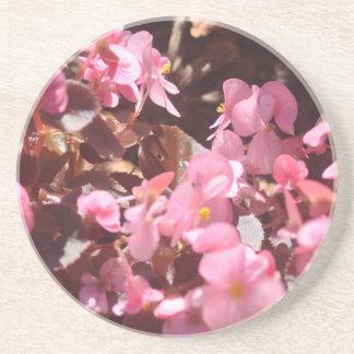 Porta-copos De Arenito produtos florais