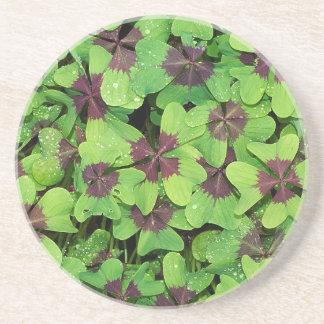 Porta-copos De Arenito Remendo do trevo de quatro folhas, azeda, com