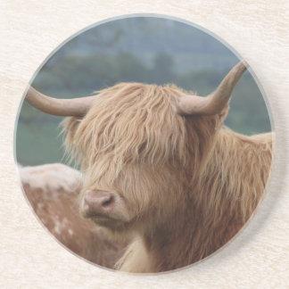 Porta-copos De Arenito retrato do gado das montanhas