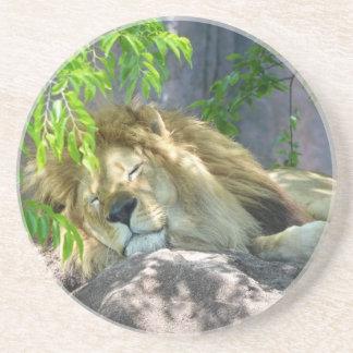 Porta-copos De Arenito sesta do leão