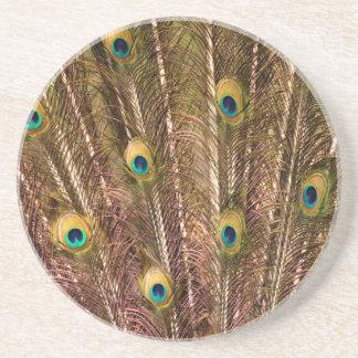 Porta-copos De Arenito Teste padrão da pena do pavão