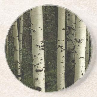 Porta-copos De Arenito Textura de um retrato da floresta