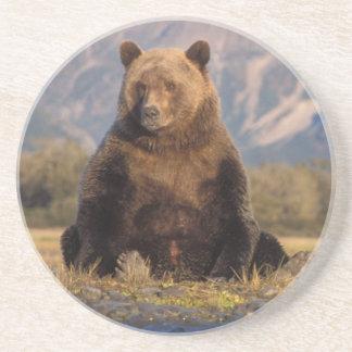 Porta-copos De Arenito urso marrom, arctos do Ursus, urso de urso, Ursus