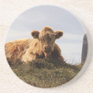 Porta-copos De Arenito Vaca de Luing na ilha de Islay, Scotland