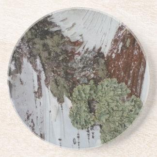 Porta-copos De Arenito Vidoeiro de Mainely