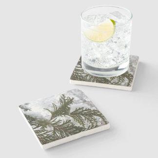 Porta Copos De Pedra A neve no Evergreen ramifica foto da natureza do