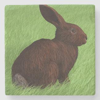 Porta Copos De Pedra Alerta bonito do coelho na porta copos da pedra da