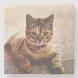 Porta Copos De Pedra Animal de estimação novo bonito do gatinho do