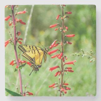 Porta Copos De Pedra Borboleta e Wildflowers de Swallowtail do tigre